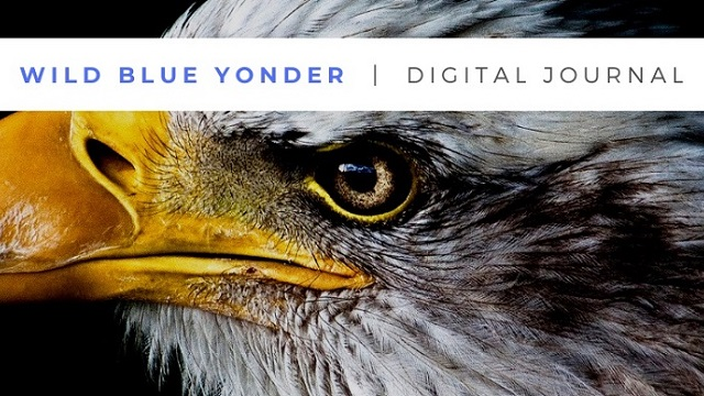 Wild Blue Yonder Online Journal is a forum focused on airpower thought and dialogue. The journal seeks to foster discussion and debate among air, space, and cyberspace practitioners. We want to hear your ideas on how to reshape the way we think about air, space, and cyberspace.  Our articles bridge the gap between academic thought and practical operational experience.  African Affairs, published quarterly, is to be the premier multidisciplinary peer-reviewed Journal cutting across both the social sciences and airpower operational art and strategy.